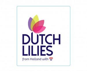 Dutch Lilies